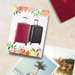 [Shiseidov] Shiseido has you destination-proof and camera ready for your summer travels!
