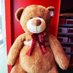 [Hamleys of London] True friends are never apart, maybe in distance but never in heart ❤️.