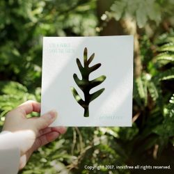 [Innisfree Singapore] Are you taking a moment to appreciate the greenery around us?