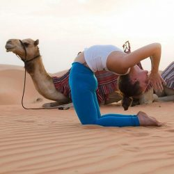 [Fit N Fab] Two powerful camels: one the product of nature, the other the product of practice.