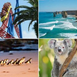 [Changi Recommends] Travelling around Australia with a tight budget?
