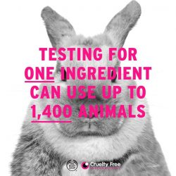 [The Body Shop Singapore] Did you know approximately 1,400 animals can be subjected to tests for a single cosmetic ingredient?