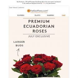 [FarEastFlora] July Exclusive: 20% off Premium Ecuadorian Roses for your nearest and dearest.