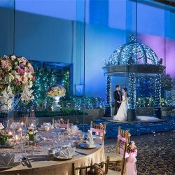 [LA BELLE] Calling out to brides of 2017 and 2018 and have yet to find the perfect wedding venue!