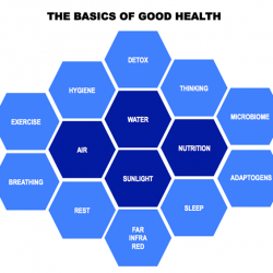 [Healthystars] The Basics of Good HealthYour body is an amazing creation of complex living systems and you live in an