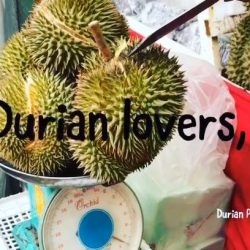 [GUARDIAN HEALTH AND BEAUTY] Durian lovers, look no further for the BEST durians in town as we bring you the cream of the crop