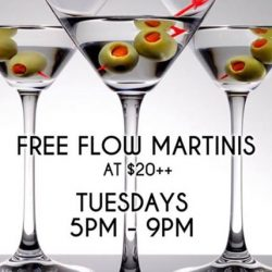 [Ergokid] Tuesday Free Flow Martini for $20++ and 1for1 All Draught Beers & House Pours during Happy Hour