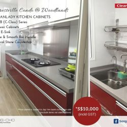 [Song-Cho] FORESTVILLE CONDO | CLEANUP KITCHEN CABINET Our CLEANLADY kitchen cabinet unit @ Forestville Condo is *$10,000 (incld GST).