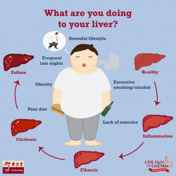 [Eu Yan Sang] Are you in danger of harming your liver?