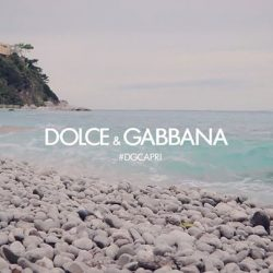 [Capitol Optical] Discover the expression of passion and vitality with the  new Dolce & Gabbana Blues collection.
