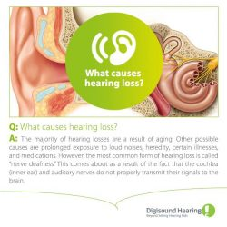[Digi-Sound Hearing Care Centre] Suffer from hearing loss or know someone who do?