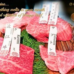 [Magosaburo] What meat would you prefer to enjoy for your Happy Friday?