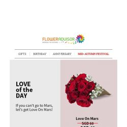 [Floweradvisor] Save SGD 11 for a This Cone of 10 Red Roses. Only Today!