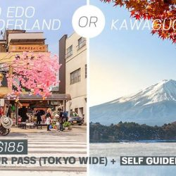 [Changi Recommends] Travelling around Tokyo only?