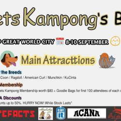 [Pets Kampong] Shower your beloved pets with gifts once again!