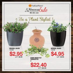 [Far East Flora] Give your plants a new look with pots now on sale with our 52nd Anniversary.