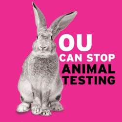[The Body Shop Singapore] It's time to end animal testing of cosmetics globally – now and forever.