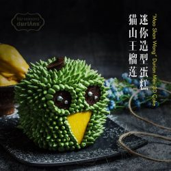 [Four Seasons Durians] We offer a range of durian pasteries and that includes 3D Durian Cake!
