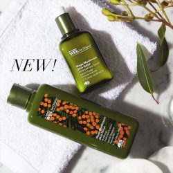 [Origins] Crowd favourite Mega Mushroom Treatment Lotion is now available in an exclusive new packaging - Have you gotten your own bottle
