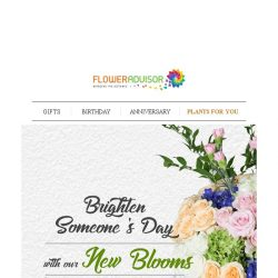 [Floweradvisor] SUNDAY NEW: Latest Blooms To Draw a Cute Smile of Her. Check Them Out!