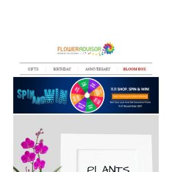 [Floweradvisor] Plant Your Happier and Healthier Life + Test Your Luck on Spin and Win Promo!