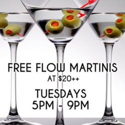 [The Beacon] Tuesday Martini Free Flow for $20++ with 1for1 All Draught Beers & House Pours during Happy Hour