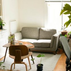 [Far East Flora] Indoor & outdoor plants are perfect complements to your home!