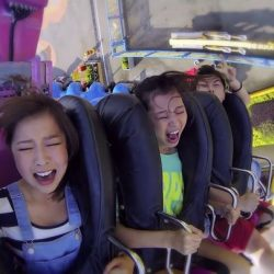 [Changi Recommends] Perfect for all ages, don't miss out on a fun-filled day at Ocean Park if you're visiting