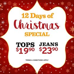 [Denizen Singapore] Celebrate with dENiZEN Christmas deals from now till 5 January 2018 with tops at $19.