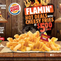 Burger King: BK Flamin' Hot Deals are even HOTTER with Cheesy Fries at $5 Each!