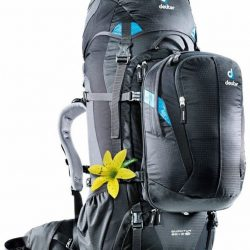 [BACKPACKERS GALLERY] Promotion is on.