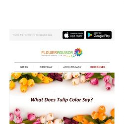 [Floweradvisor] Every color of tulips represent different meaning. Find out here!