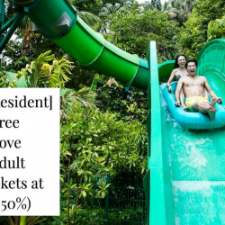 Adventure Cove Waterpark: Buy 1 Get 1 FREE Tickets for Singapore Residents!
