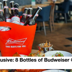 Harry's: Enjoy 8 Bottles of Budweiser @ $49++ (UP $78++) for Singtel Customers!