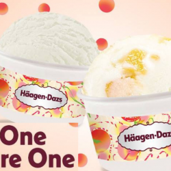 Häagen-Dazs: Buy 1 Single Scoop of Frozen Yogurt & Get Another Scoop FREE