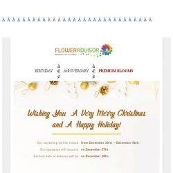 [Floweradvisor] Wishing You a Very Merry Christmas and Happy Holidays!