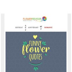 [Floweradvisor] Today is Boring. See This Funny Flower Quotes!