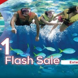 Adventure Cove Waterpark: 1-for-1 Flash Sale - Two Adult One-Day Tickets at only SGD38!