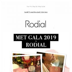 [RODIAL] Ashley Graham x Rodial At The MET Gala ✨