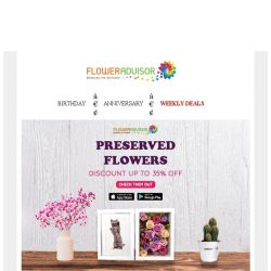 [Floweradvisor] Make Timeless Memory Of Love with Preserved Flowers. Grab Up to 30% OFF Now!