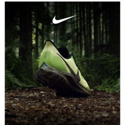 [Nike] Go off-road: Pegasus 36 Trail