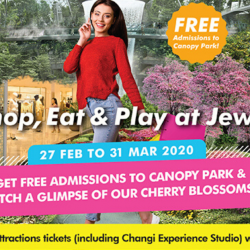 Jewel Changi Airport: Enjoy FREE Admission to Canopy Park & 50% OFF Attraction Tickets!
