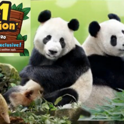 Wildlife Reserves Singapore: Enjoy 1-for-1 Admission & $2 Retail Voucher This March at Singapore Zoo, Night Safari, River Safari and Jurong Bird Park!